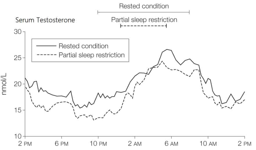 sleep testosterone graph