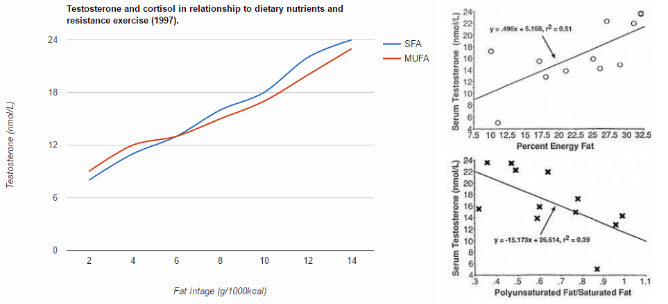 two graphs from studies on testosterone and fatty acids
