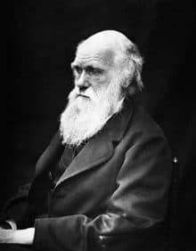 the epic beard of charles darwin in black and white