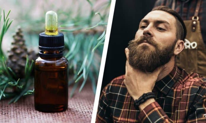 best beard oil featured image