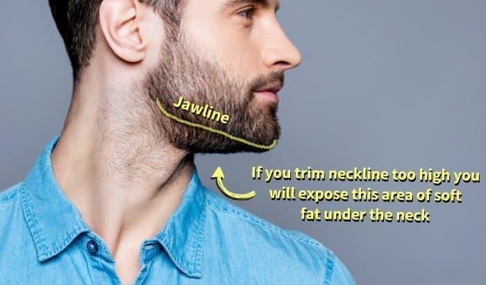 soft fat under beard neckline