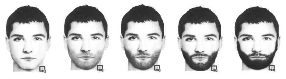 beard attractiveness study fig.1