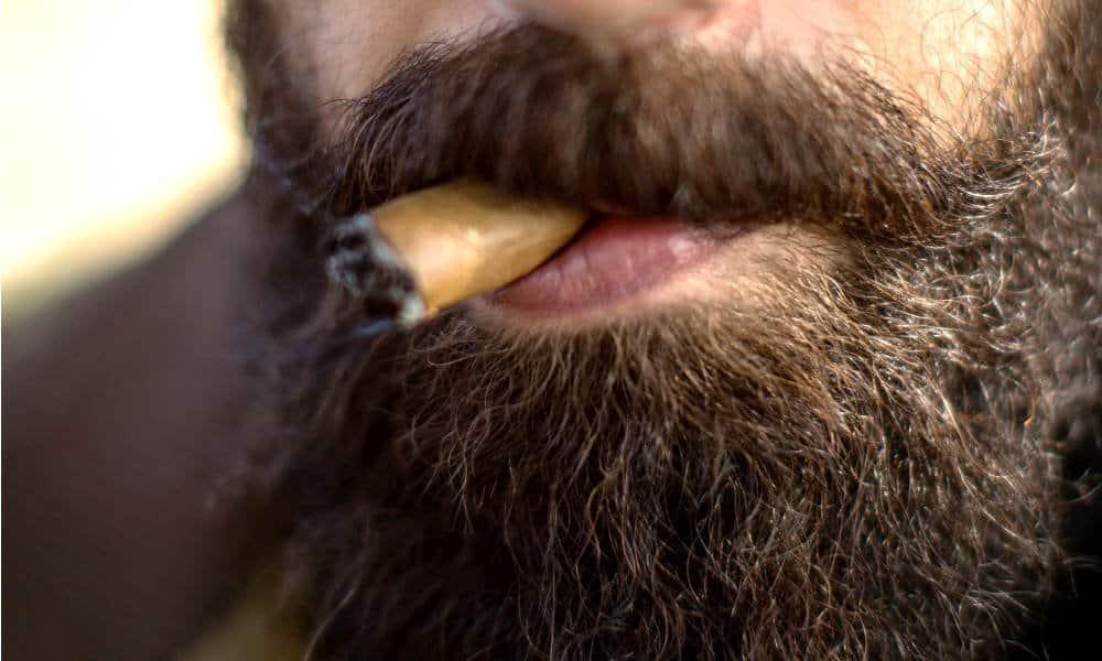 man burning a cigar with a four month beard