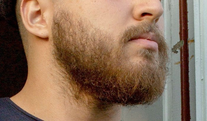 usual 2 month beard example