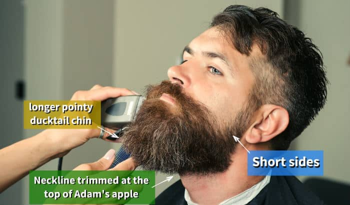 trimming and shaping a ducktail beard