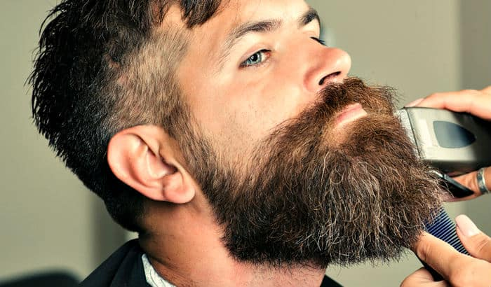 big beard with short sides
