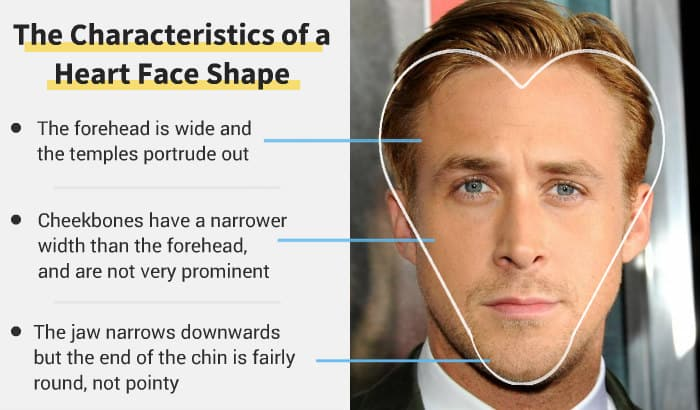 heart face shape key features