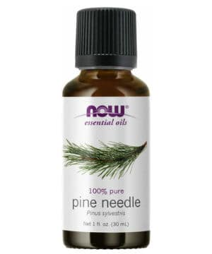 now pine needle essential oil