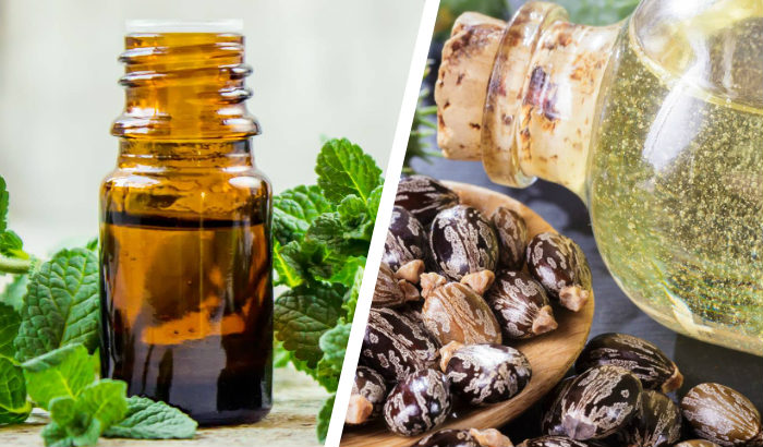 peppermint and castor oils
